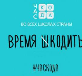 chaskoda_2